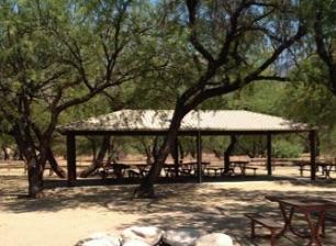 Gila Monster Campsite Catalina State Park